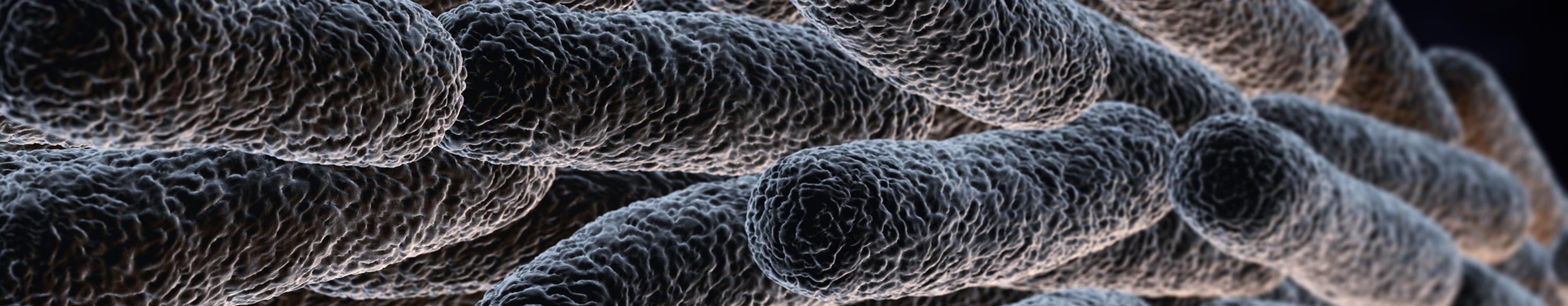 Biocide Sensitivity Analysis